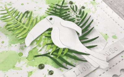 Regenwald – Tukan – Palmblätter