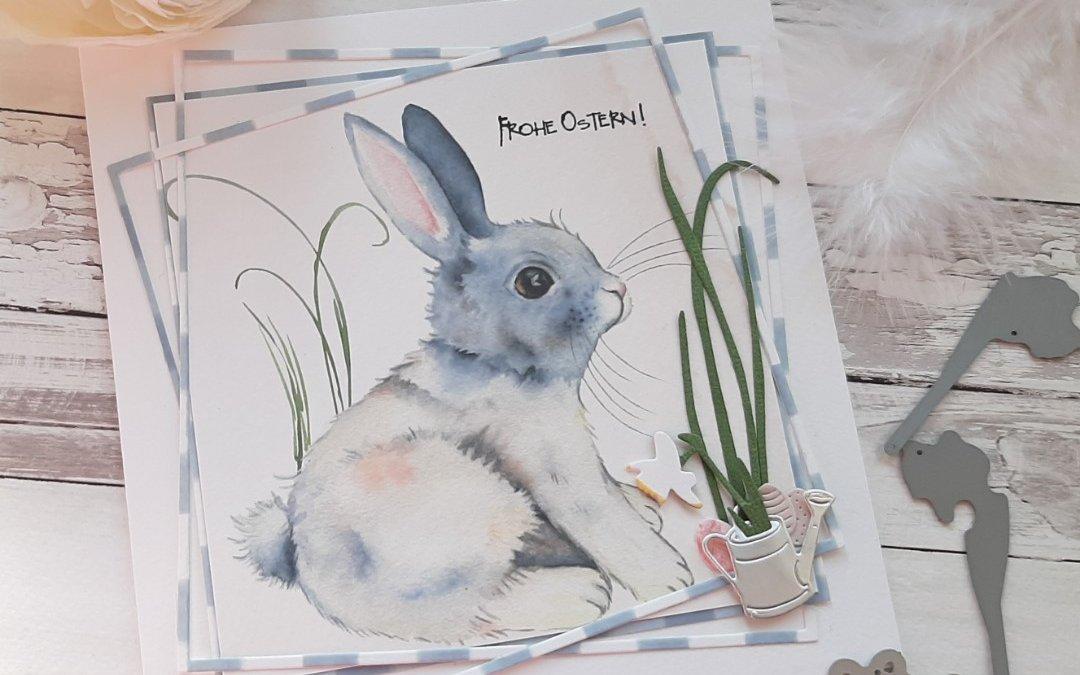 Bunny im Rahmen